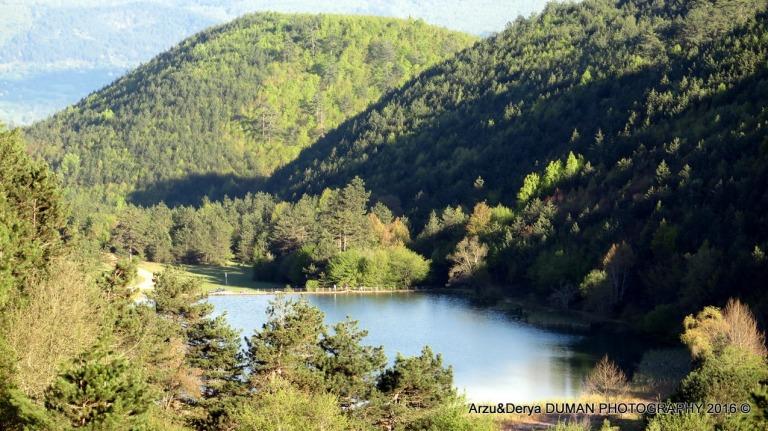 Arzu-Derya Photos (4)