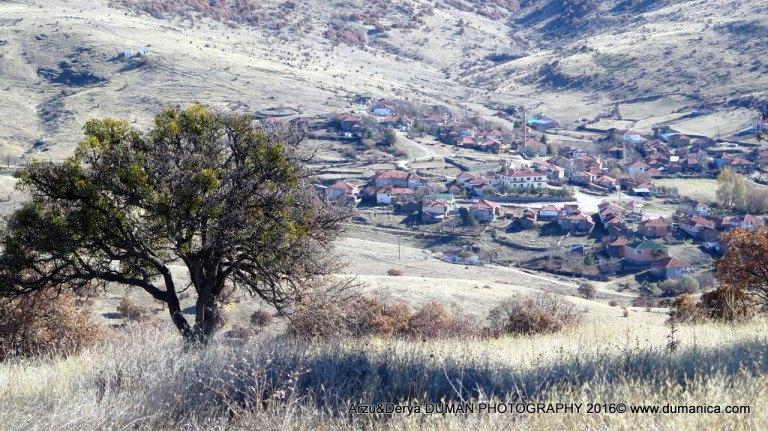 arzu-derya-photgraphy-2016-13