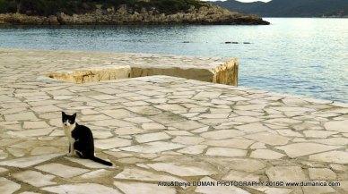 arzu-derya-photography2016-98